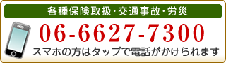 06-6627-7300