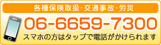 06-6659-7300