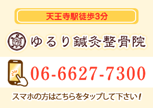 tel:06-6627-7300